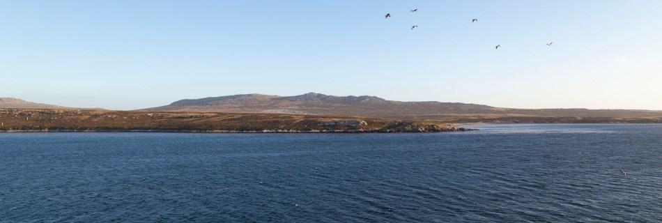 Blanco Bay, Falkland Islands