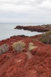 Red Rock, Punta Tombo