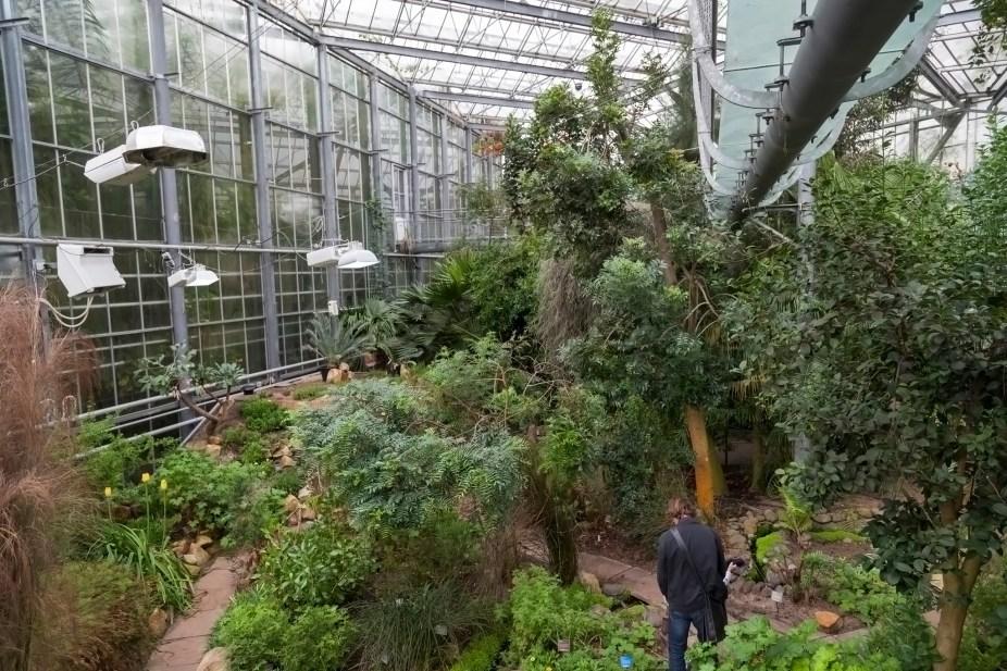 Hortus Botanicus Greenhouse