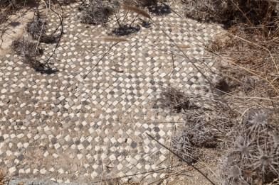 Delos Tiled Floor