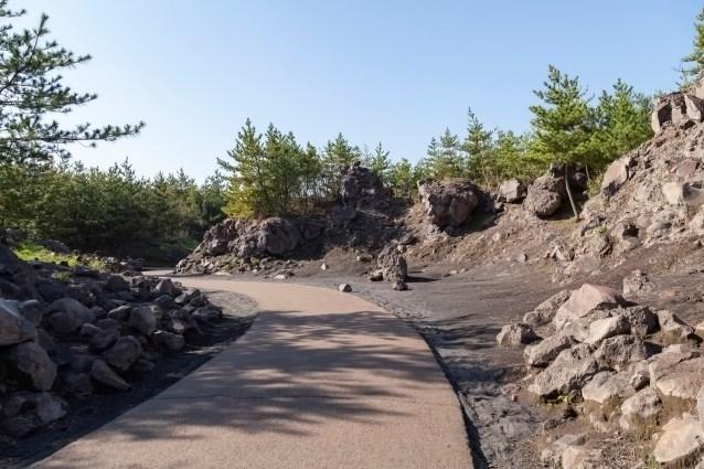 Arimura Lava Observatory