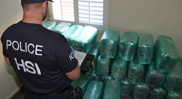 drug traffickers give a free pass by the dea