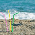 Plastic Straws Polluting the Ocean