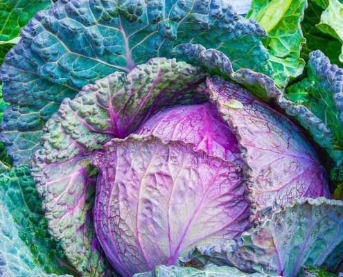 Frutta e verdura per gli occhi: mangiamone di più - Cavolo