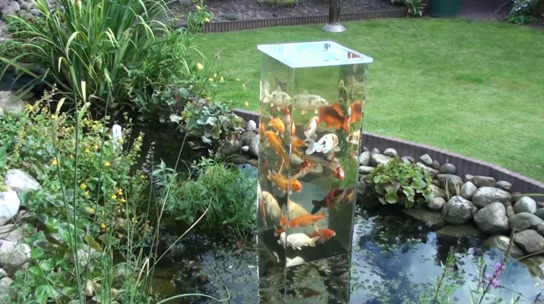 tour a poissons avec un aquarium