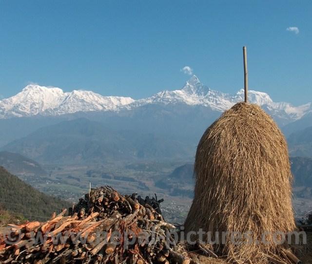 Machhapuchhre Or Fishtail Mountain And Annapurna Range From Sarangkot