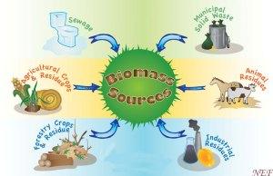 BiomassSourcesLand