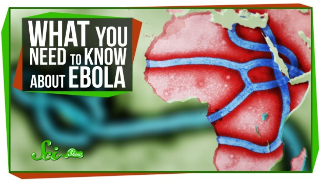 What is Ebola?
