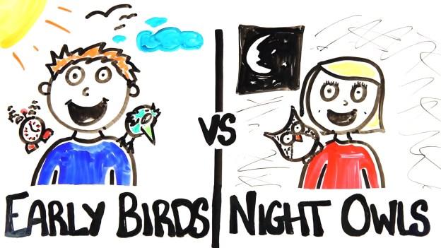 Morning people vs Night Owls