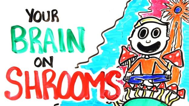 Brain on Magic Mushrooms