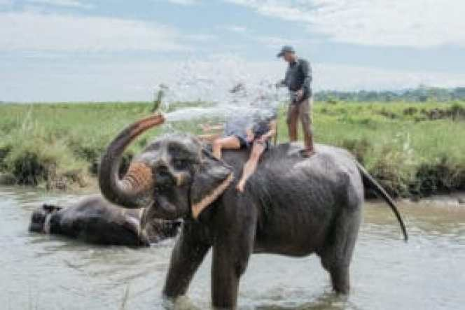 Chitwan - best places to visit in Nepal in summer