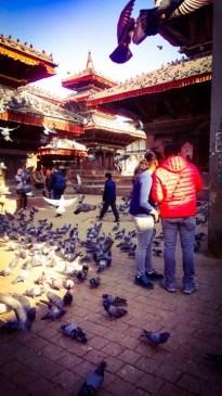 Kathmandu tour- Nepal