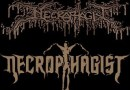 necrophagist