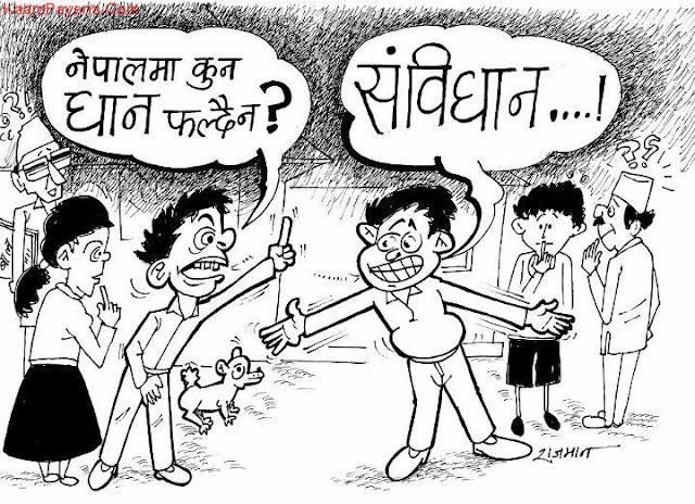nepalma-nafalne-dhaan