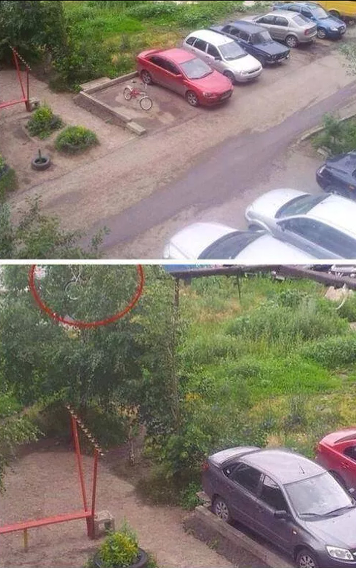pissed-off-driver-throws-cycle-on-tree