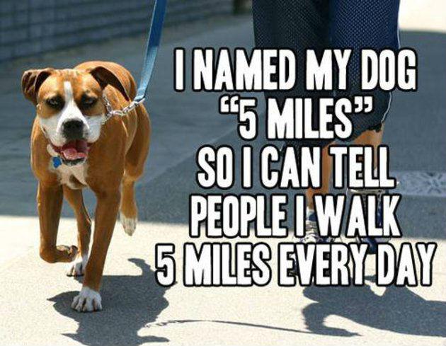 walk5miles