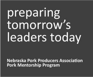 Preparing Tomorrow's Leaders Today Mentorship