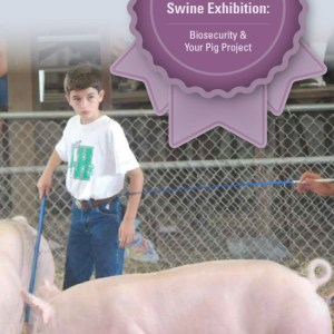 A Champions Guide to Youth Swine Exhibition