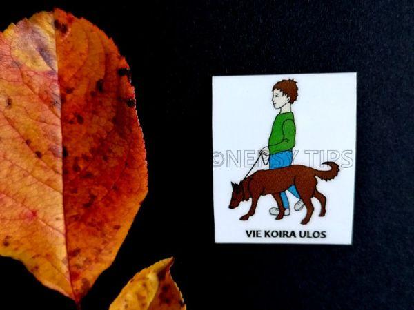 Nepsy Tips lapsen toiminnanohjauksen tukemiseen suunniteltu magneettinen kuvatukikortti Vie koira ulos.