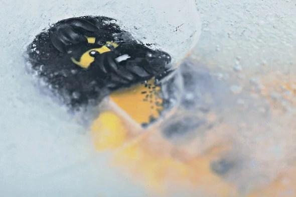 Frozen Caveman Grok Lego