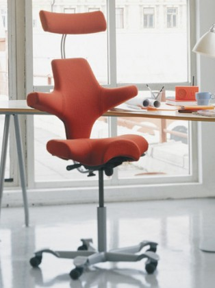 hag capisco chair review best leather zero gravity chairs the mega on ergonomic for bad backs ergo