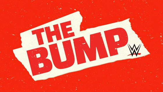 Image result for wwe the bump