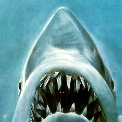 Poster artwork from the classic Spielberg movie Jaws