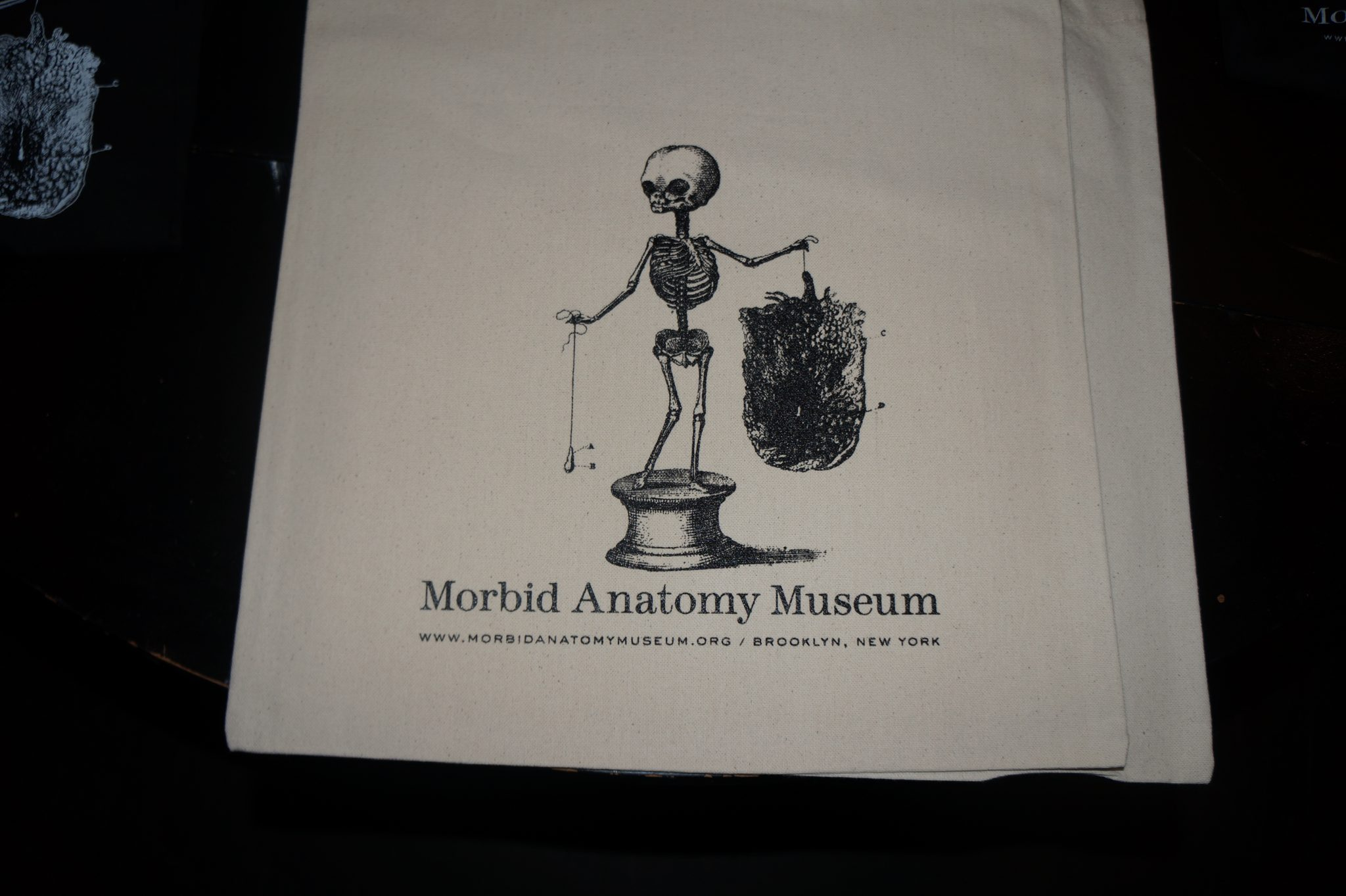 Fannibals United At The Morbid Anatomy Museum In Nyc For A Hannibal