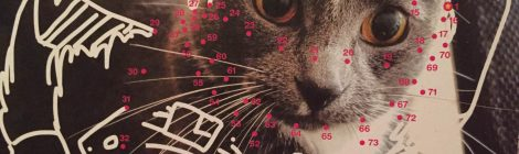"""""""I Draw On Cats"""" Gets the Connect-the-Dots Treatement"""