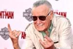 Stan Lee: uomo, fumettista, editore, eroe