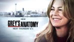 ABC su titolo e data del finale della stagione 15 di Grey's Anatomy