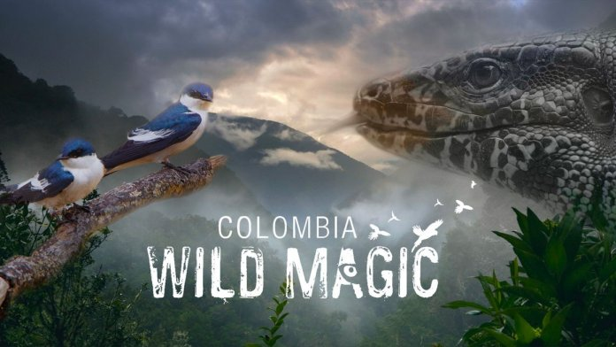 colombia wild magic documentario netflix settimana maggio cancellato