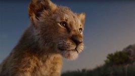 Il Re Leone: online i nuovi poster del live-action Disney