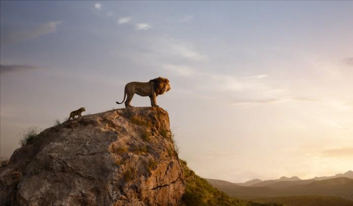 il re leone  recensione walt disney
