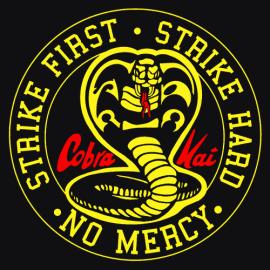 Cobra Kai – Arriva il trailer del sequel di Karate Kid