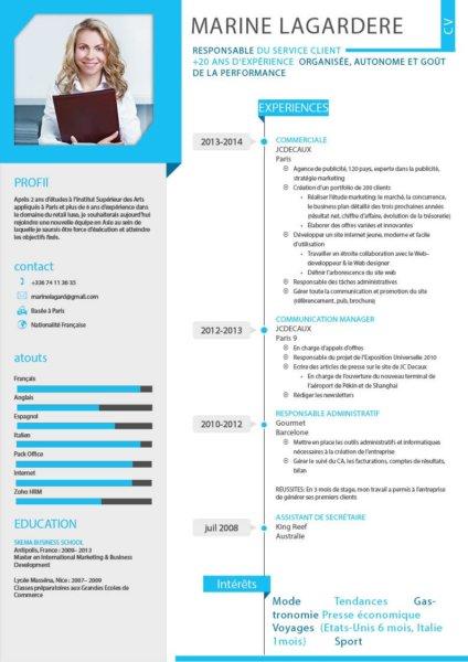 expertise logiciel cv