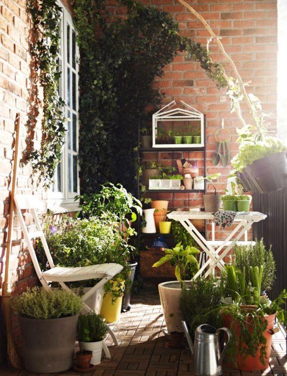 rośliny balkonowe inspiracja twobrokesisters