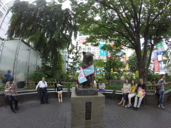 Der treue Hund Hachikō