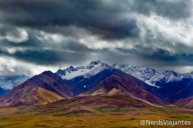 Polychrome Pass - Denali National Park