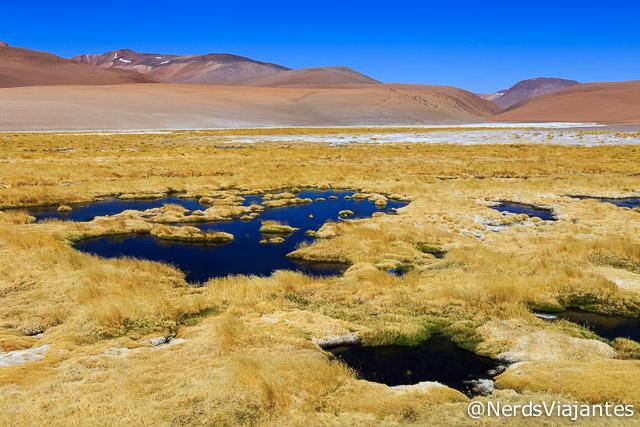 Paisagem no caminho para o Salar de Tara no Atacama - Chile