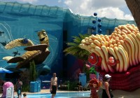 art of animation resort big blue pool