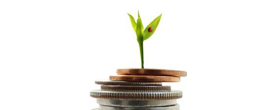 checking vs savings accounts