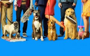 Nossa Vida com Cães   Um Filme Fofo e Repleto…
