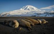 VK0 – HEARD ISLAND VOLCANO IS ERUPTING!