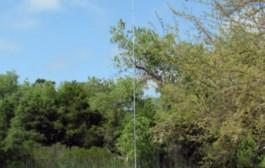 Vertical Dipole Bravo 7K  – 7 band coverage: 40-30-20-17-15-12-10