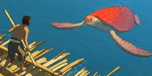 Red turtle BLON
