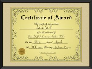 Best LGBT Romance Author 2019 Certificate