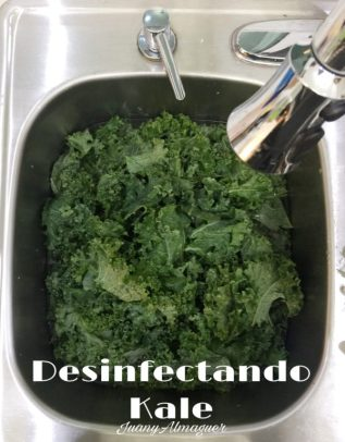 desinfectando kale