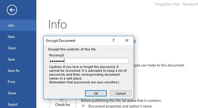 mengunci file word 4