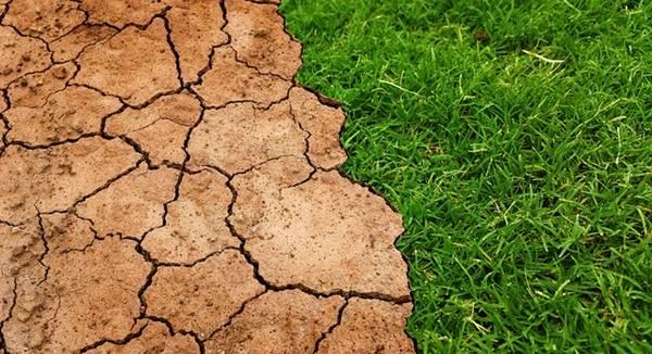 Dampak Pemanasan Global Bagi Kehidupan